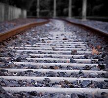 light rail bends by Hege Nolan
