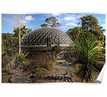 Mt Coot-tha Botanic Gardens • Brisbane • Australia  Poster