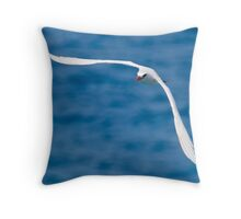 """Soaring"" - Red-tailed Bosun bird Throw Pillow"
