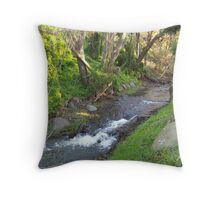 Hobart Rivulet Throw Pillow