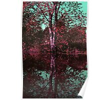 Concord River Reflections - Concord 2011 Poster