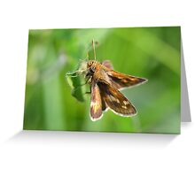 Peck's Skipper Hanging Around Greeting Card