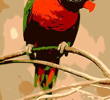Red Parrot by KrossKiwi