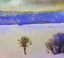 cherry creek pastures in snow by R Christopher  Vest