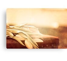 Still Life with Tulips in brown Canvas Print