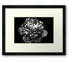 I used to be Purple Framed Print