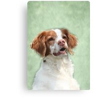 """"""" My Name Is Lizzy """" Canvas Print"""