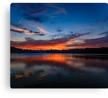 Sunset wings  Canvas Print