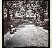 A Walk In The Park by daphsam