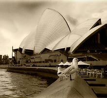 Opera House by Drew Walker