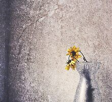 Flowers In the Window by SquarePeg