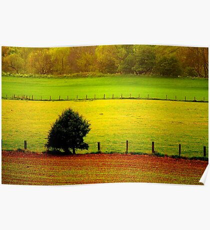 Spring Arable Fields, Low Coniscliffe, County Durham, England Poster