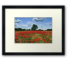 """A Crimson Kiss"" Framed Print"