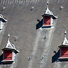 Amsterdam Dormers by phil decocco