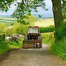 Down Yon Lonning- Cumbrian Lane. by Lou Wilson