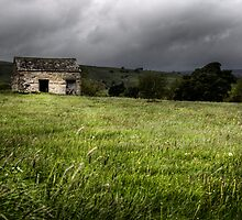 Aysgarth Barn #1 by David Robinson