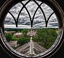 Bird's Eye View by litmusound