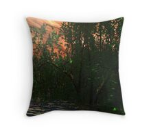 Time Will (I am) Tell, I am Telling You... Throw Pillow