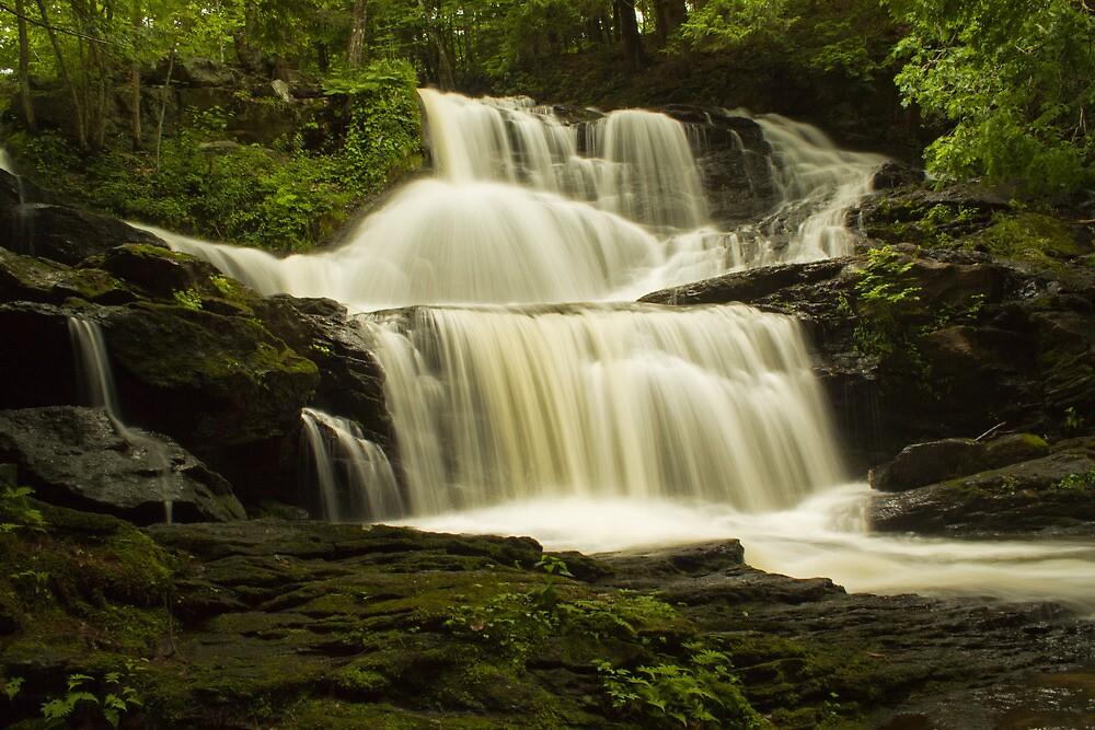 Garwin Falls by Diana Nault