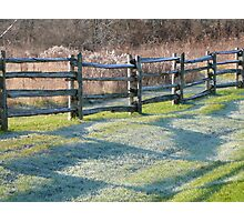 fence & frost Photographic Print