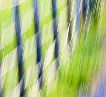 The fence goes whizzing by! by Fineli