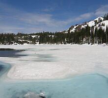 Lower Lindsey Lake by Patty Boyte