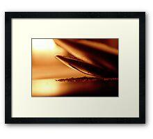 SALT & PEPPER # 002 Framed Print