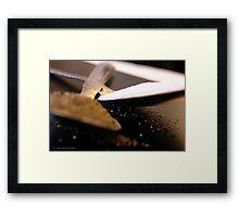 SALT & PEPPER # 026 Framed Print