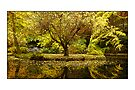 Alfred Nicholas Gardens (Card) by prbimages