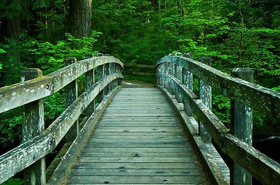 Bridge Over Silver Creek by Nick Boren