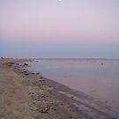 Seal Beach, CA -View South by E.E. Jacks