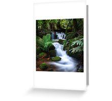 A Lush Cascade Greeting Card