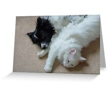 Max and Ricky Greeting Card