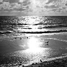Christies Beach by MargaretMyers