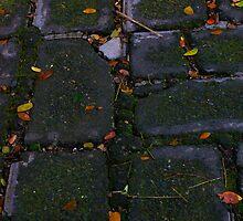 The brick road by iamYUAN