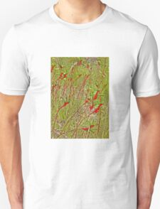 A Field of Kangaroo Paws T-Shirt