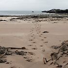 Deer Tracks on Kilmory Beach, the Isle of Rum, Scotland by rosie320d