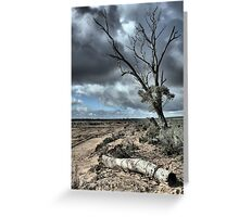 Drought & Salt Kills Greeting Card