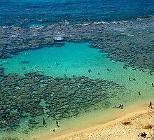 Obama Beach Honolulu by Keith Richardson