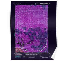 USGS Topo Map Washington Skamokawa 243739 1941 62500 Inverted Poster