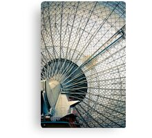 The Dish Canvas Print