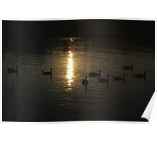 Geese on Irondequoit Bay Poster