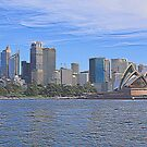 Welcome to Sydney by Steven Guy