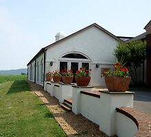 BARBOURSVILLE VINEYARDS    ^ by ctheworld
