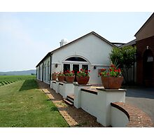 BARBOURSVILLE VINEYARDS    ^ Photographic Print