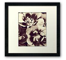 B&W Flower Cluster Framed Print