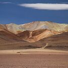 Bolivian Landscape by DianaC