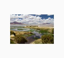 Tara Salt Flat coloured landscape Unisex T-Shirt