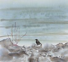 Bird on the Shore by carolyndoe