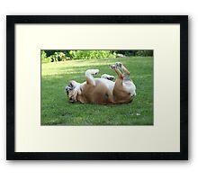 Arthur on his back Framed Print